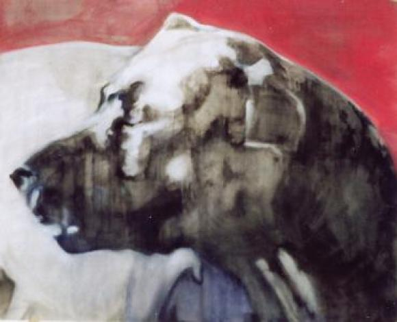 Hund, 2008 © Tine Schumann