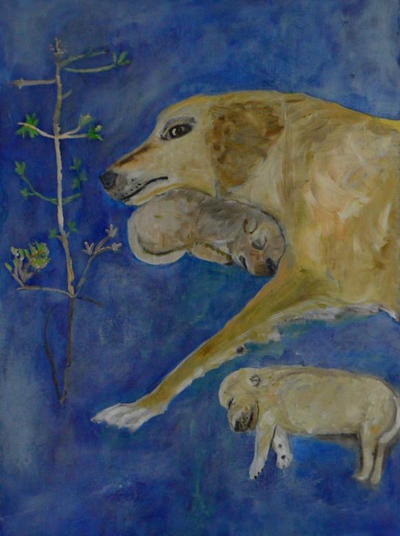 Hunde auf blauem Hintergrund, 2017 © Verena Crow