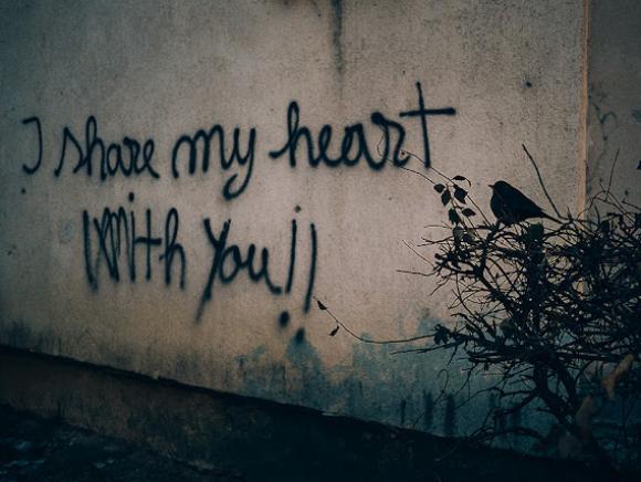 I share my heart with you, 2016 © Tamás Hajdu