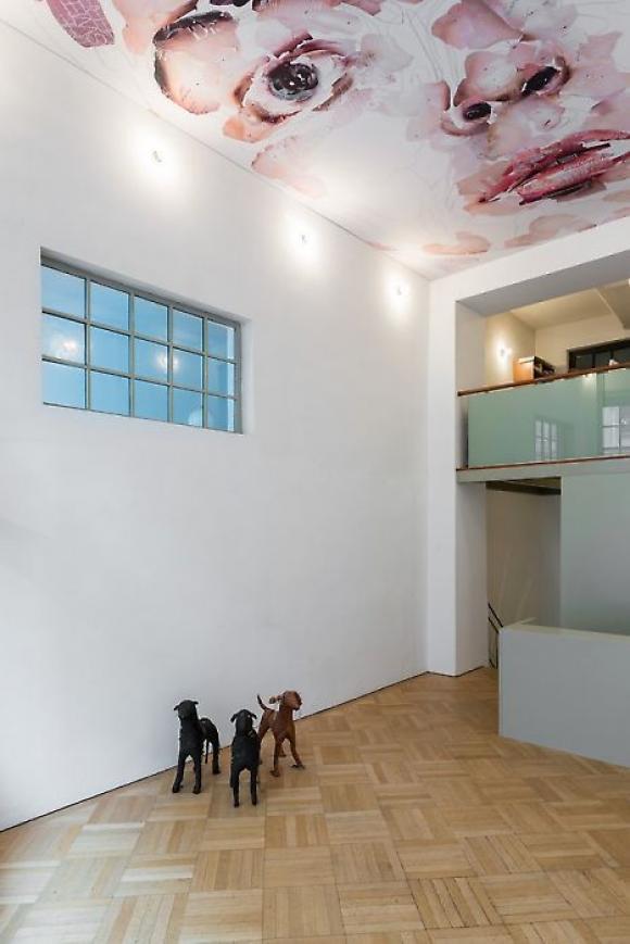 Ausstellungsansicht Galerie Georg Kargl; Foto © Galerie Kargl