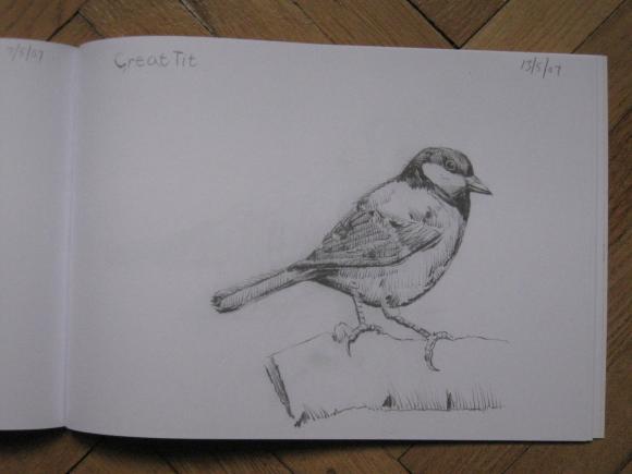 Edwyn Collins: Some British Birds