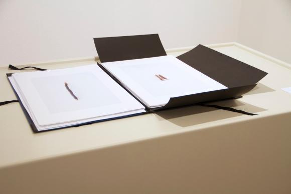 Bewerbungsmappe Carlos v.d.Hügeln, Ausstellungsansicht © Lena Lieselotte Schuste