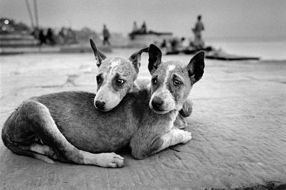 India 2008 © Michel Vanden Eeckhoudt, Kehrer Verlag