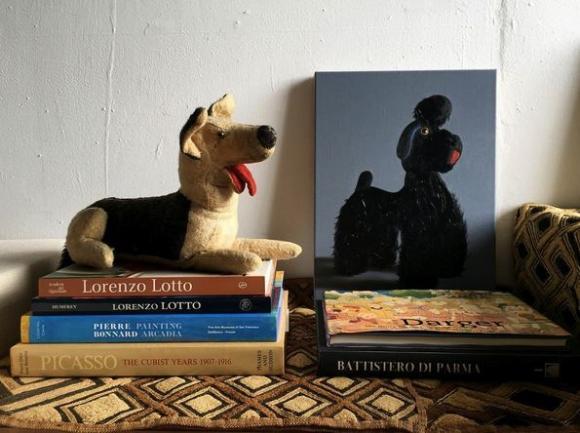 Stofftier neben Pudel-Porträt © Peter Jones