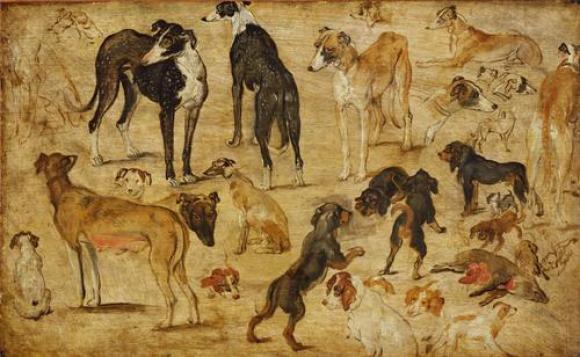 Jan Brueghel d.Ä., Tierstudie (Hunde), um 1616