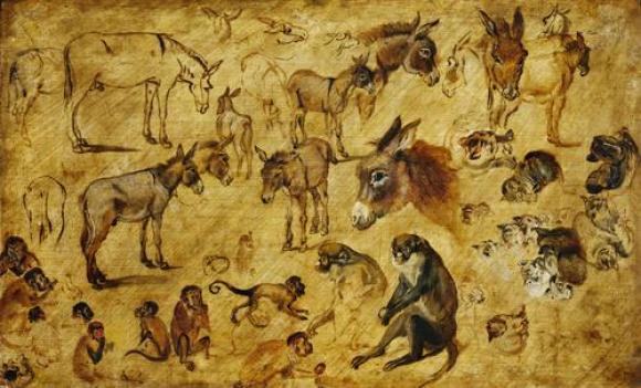 Jan Brueghel d.Ä., Tierstudie (Esel, Katzen, Affen), um 1616