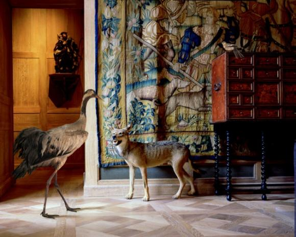 Karen Knorr, The Wolf's and the Stag's Room