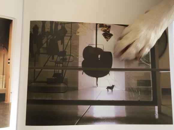 Hedy blättert im Ausstellungskatalog Wiener Gold, Foto: Petra Hartl