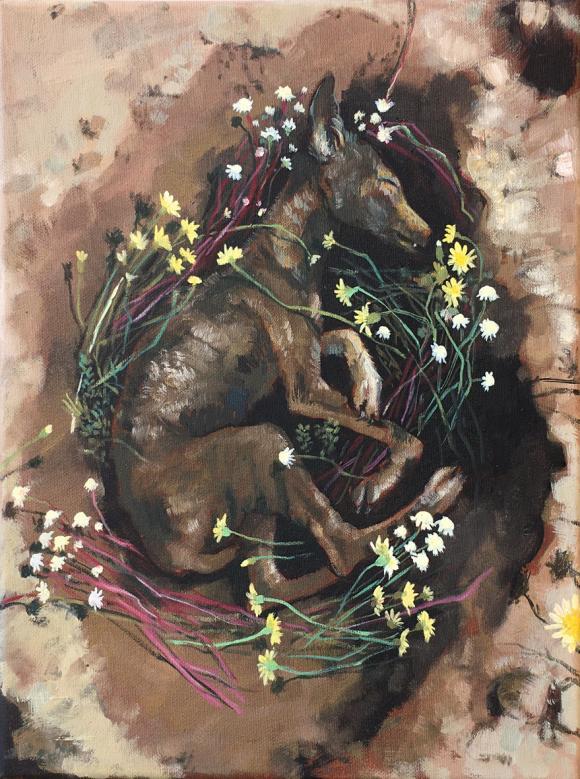 Kojote, 2020 © Bärbel Rothhaar