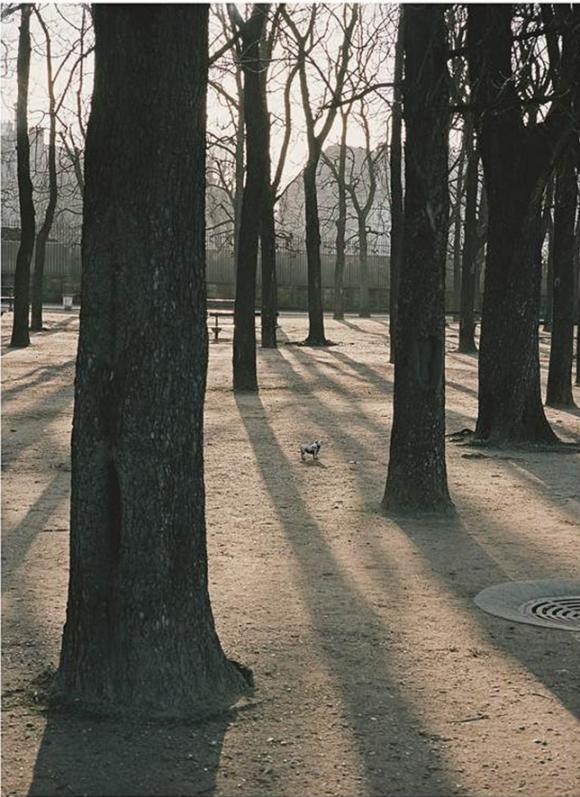 Peter Dressler, Aus Changement de Propriétaire, 2007-2008 © Fotohof Archiv