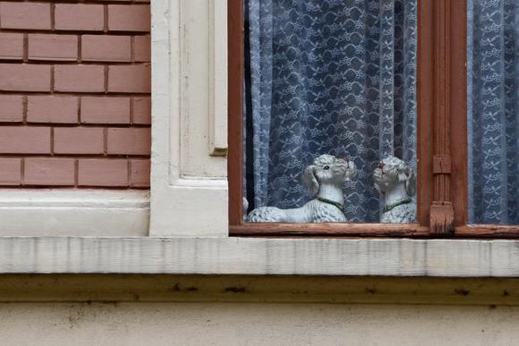 Lebenszeichen © Daniel Zakharov