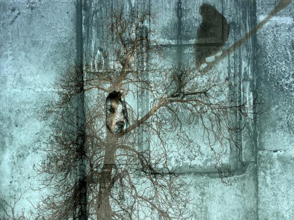 Les Passagers - Bestiaire post-moderne, 2013 @ Corinne Rozotte