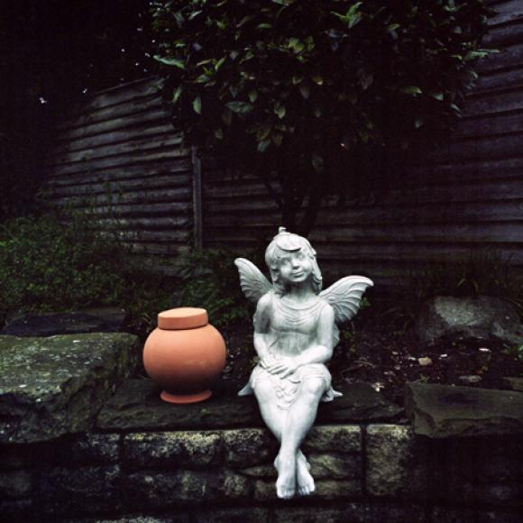 Vestige © Lorna Evans