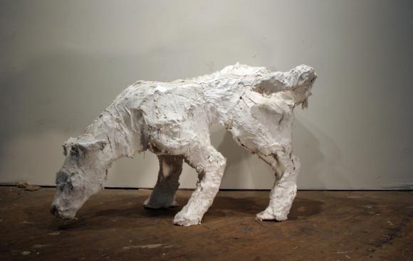 Marking, large dog © Colleen
