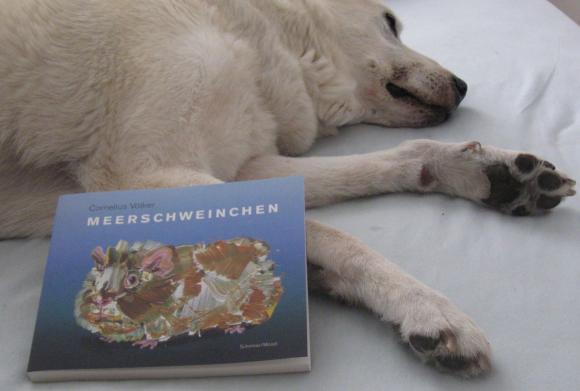 Rocco und das Meerschweinchenbuch