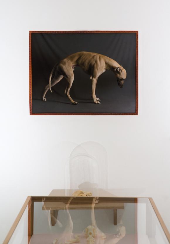 Mona Mönnig, man-made wonders, Ausstellungsansicht
