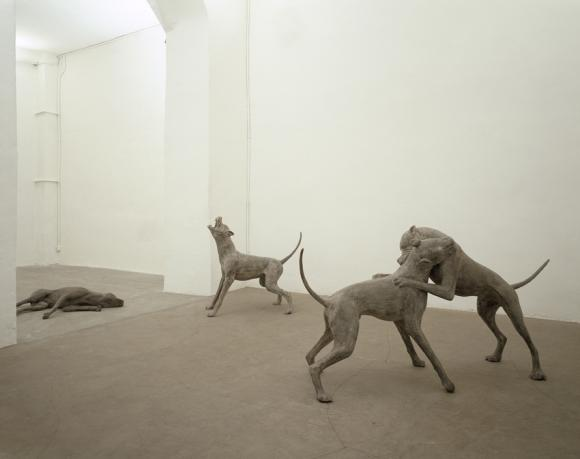 Liliana Moro, Underdog, 2005