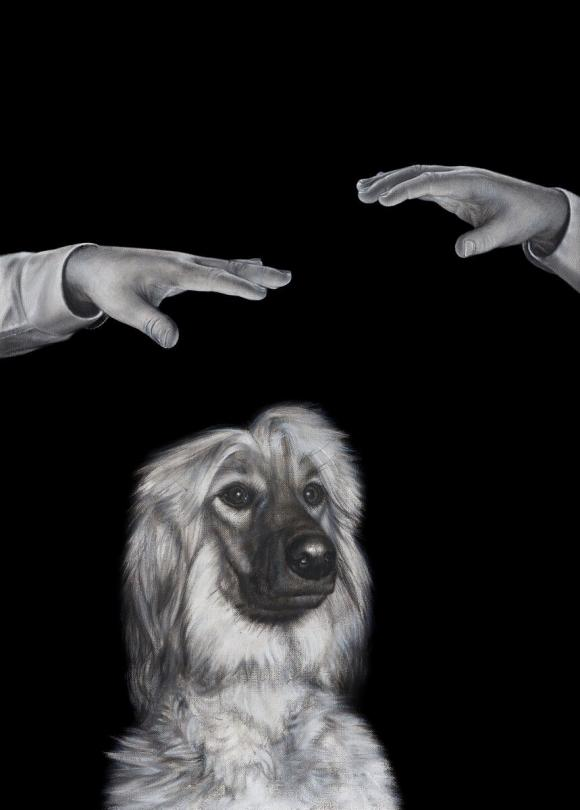 Mysterious Pair of Hands Hypnotiz a Dog, 2020 © Drago Persic