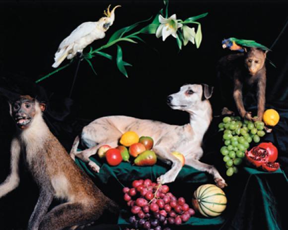 Nadin Maria Rüfenacht, Natura morte, Helden, 2005