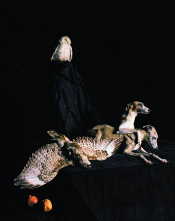 Nadin Maria Rüfenacht, Nature morte, Helden, 2005