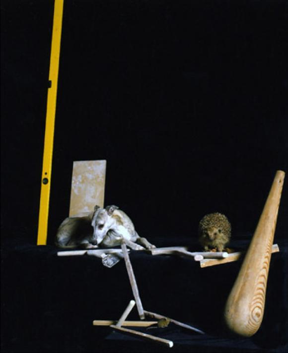 Nadin Maria Rüfenacht, Nature morte, Hund mit Igel und Werkzeug, 2005