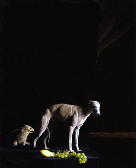 Nadin Maria Rüfenacht, Nature morte, Hund mit Trauben, 2006