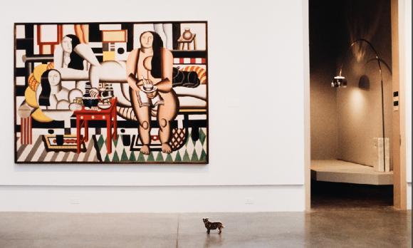Peter Dresseler, Zu Besuch im Museum of Modern Art © Fotohof Archiv