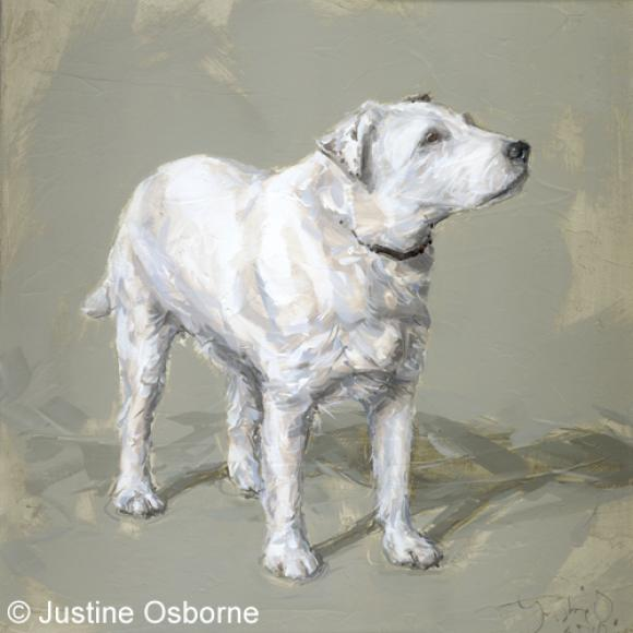 Justine Osborne, Billy, Parsons Jack Russell