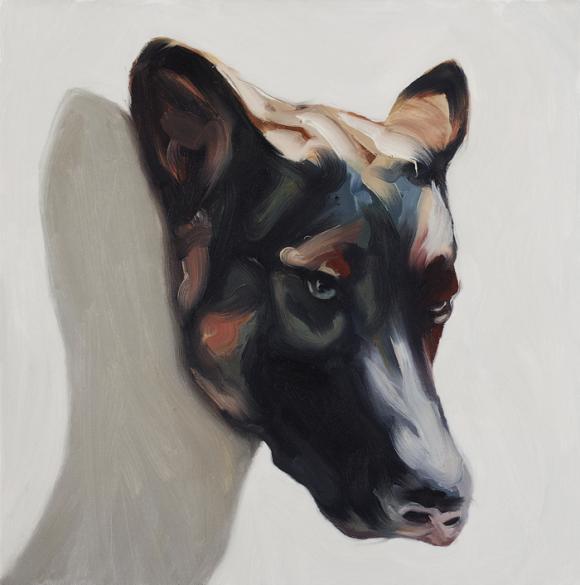 Peter Ravn, Dog