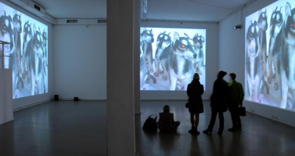 Ausstellungsansicht Galerie XL, Moskau, 2008