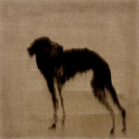 Rachel Howard, Dog looking back, 2007