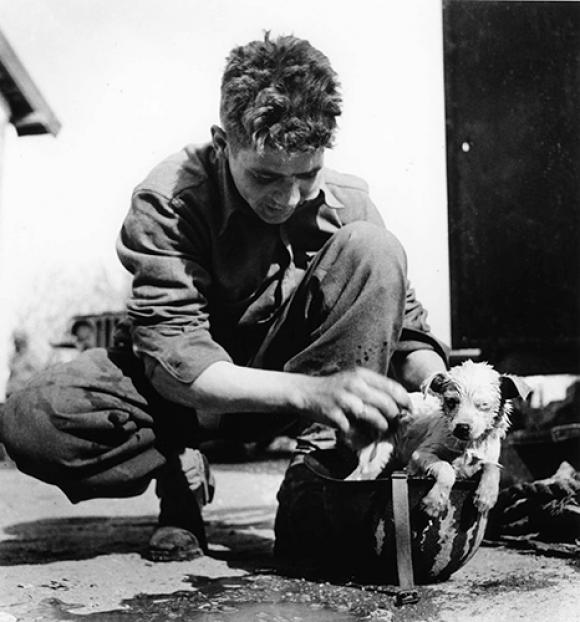 Robert Capa, Soldat mit Hund im Helm, Tunesien, März -April 1943