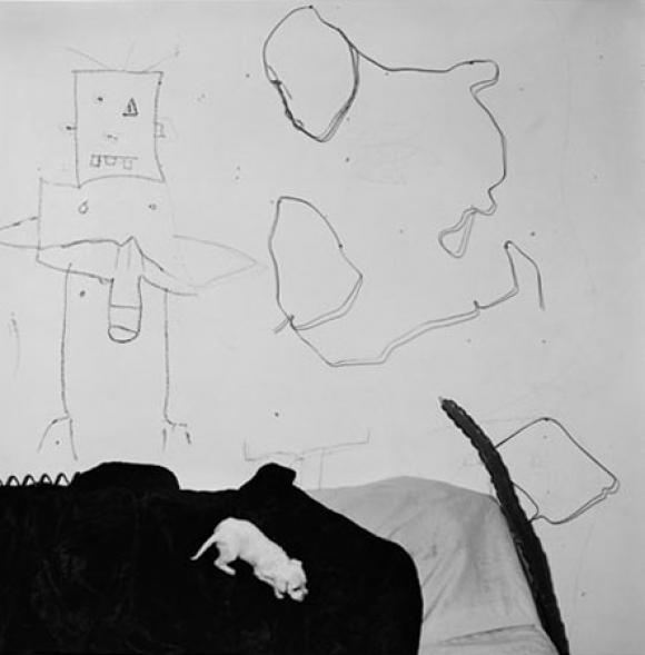 Roger Ballen, Shadow Chamber, Oblivious, 2003