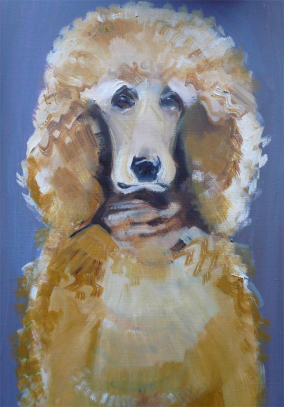Poodle © Sally Muir