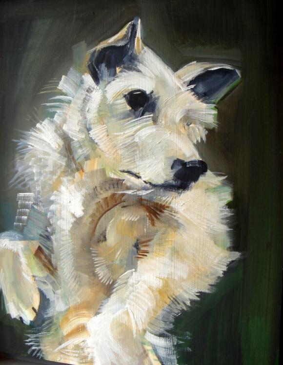 Terrier © Sally Muir