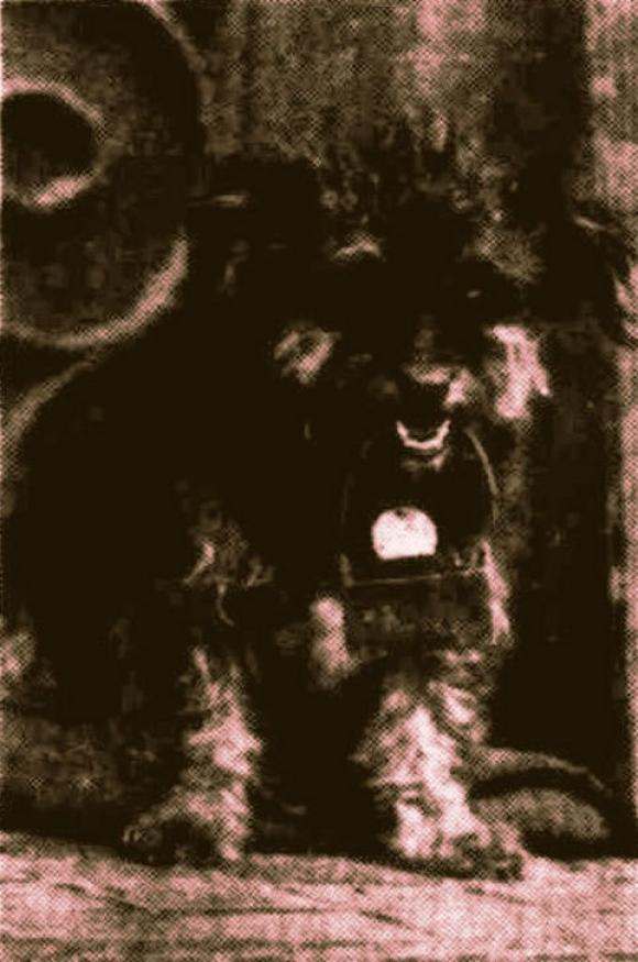 Lucy mit Blechdose für Kleingeld, 1936