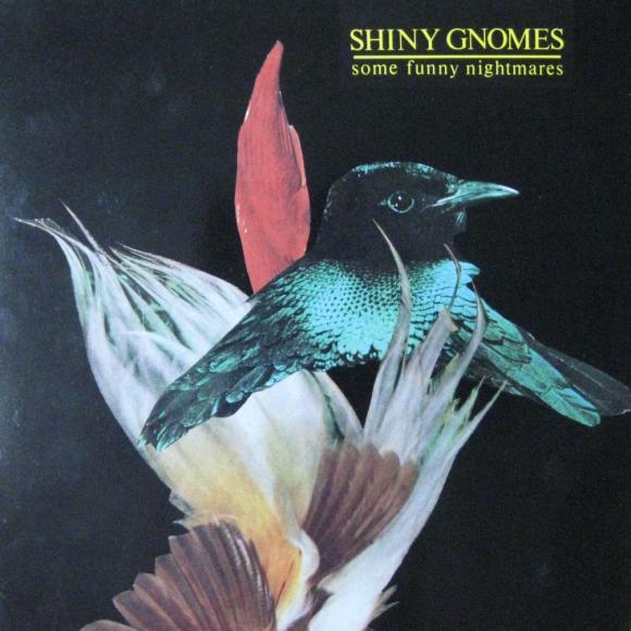 Shiny Gnomes