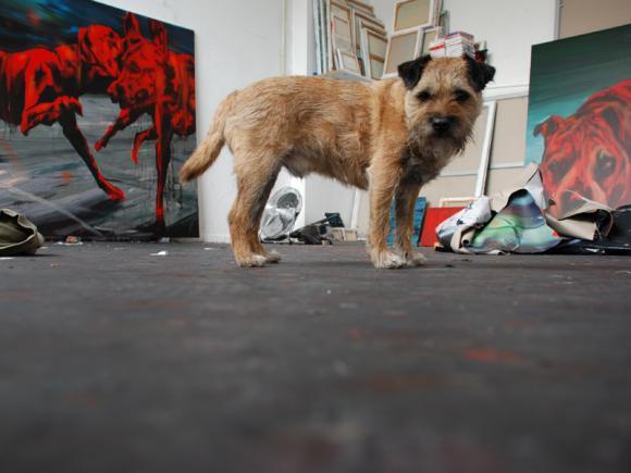 Hund im Studio, 2010
