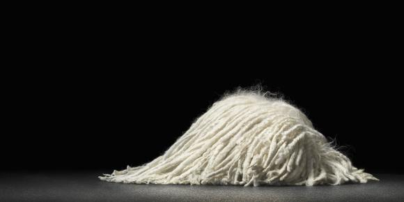 Sleeping Mop © Tim Flach