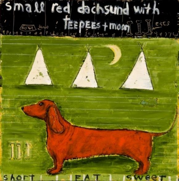 Small Red Dachshund © Mary Scrimgeour