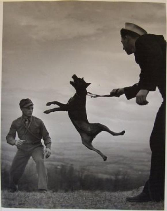 Eugene Smith - A dog with soldiers