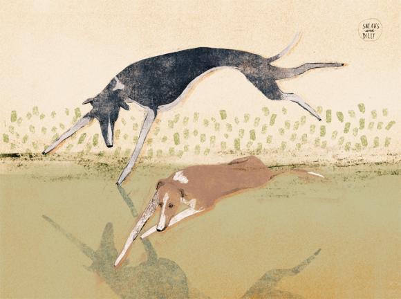 Sneaks und Billy, Windhunde © Anja Zaharanski