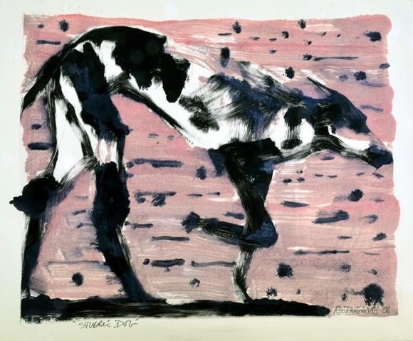 Stubble dog © Nick Bodimeade