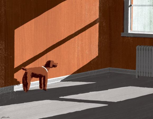 A Dog's Grace © Tatsuro Kiuchi