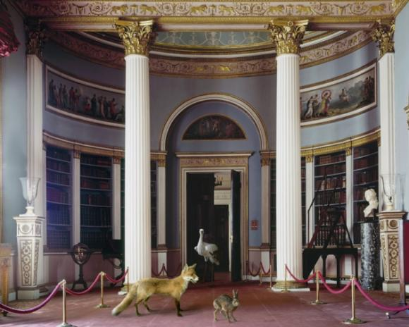 Karen Knorr, The Library II