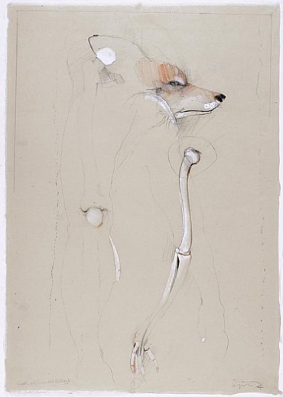 Coyote & Leonardo's Anatomy © Rick Bartow