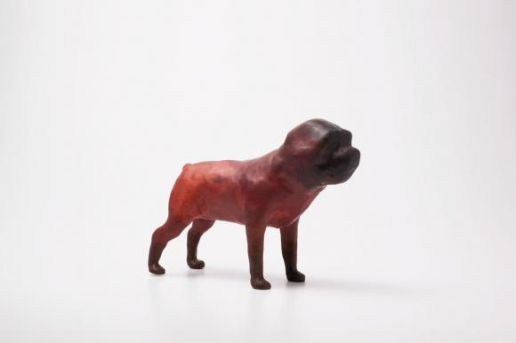 o.T. (Brown Dog), 2005 © Miguel Branco