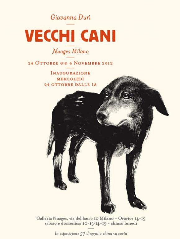vecchi cani  © Giovanna Durì