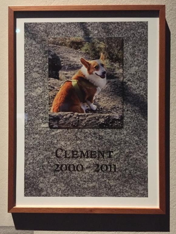 Clément (2000-2011), Foto von www.huffingtonpost.fr