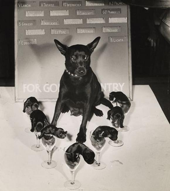 Weegee, 2.8.1942